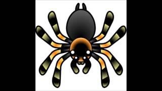 The Tarantula Song!