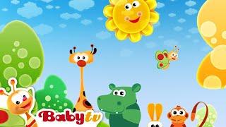 Morning Song - BabyTV العربية