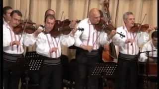 Orchestra Doina Argesului - Sarba de la Leresti si Breaza (Muzica de Petrecere) Video HD