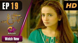 Drama | Is Chand Pe Dagh Nahin - Episode 19 | Aplus ᴴᴰ Dramas | Zarnish Khan, Firdous Jamal width=