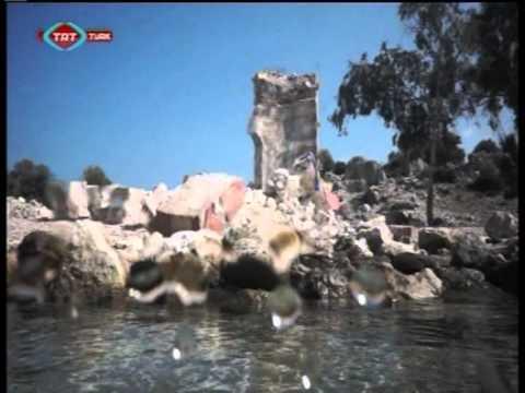 TRT TÜRK   Deniz Haber 1 Bölüm 1