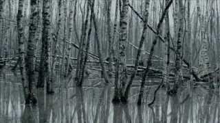 Eivør - Undo Your Mind (Official Video)