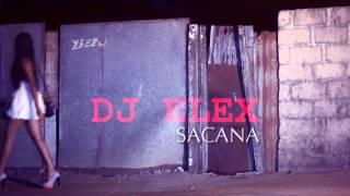 Dj Elex ft. Celia - Sacana