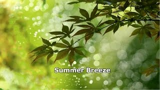 Seals & Crofts - Summer Breeze Legendado Tradução