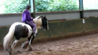 Cantering on my first lesson
