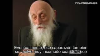 Rabbi Dr  Abraham Twerski habla sobre la Adversidad