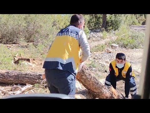Sağlıkçıların hastaya ulaşma mücadelesi: Yoldaki kütükleri kaldırdılar