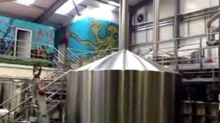Visiting Brewdog brewery