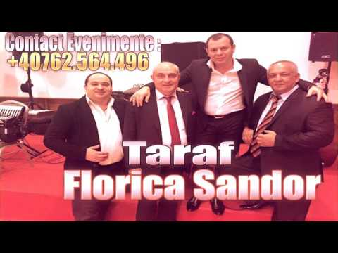 TARAFUL FLORICA SANDOR - HORA RARA ACORDEON