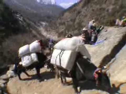 20060403 LOBUCHE EAST 2006  part 5