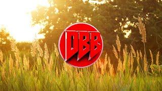 Calvin Harris - Summer (Bass Boosted) 1080p