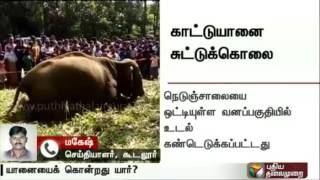 Live report: Elephant found shot dead inside Kerala's Wayanad Wildlife Sanctuary