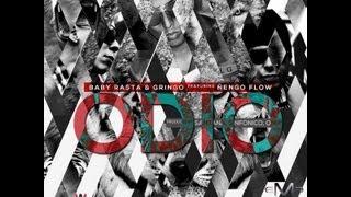 Baby Rasta Y Gringo Feat Nengo Flow - Odio 2013
