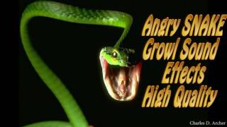 Angry SNAKE Bark Angry SNAKE Growl Sound Effects Best Quality NEW 2016