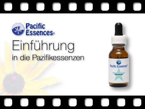 Pacific Essences: Einführung