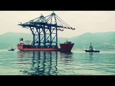 STS Light Cranes - OMG BEDESCHI