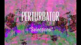 Protector 101 / Perturbator Split (c44) on RDR