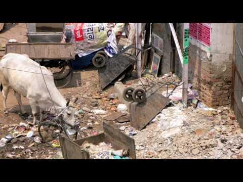 India-nepal 2009 Killitos