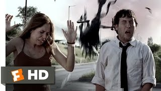 Infestation (6/10) Movie CLIP - The Swarm Attacks (2009) HD