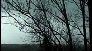Storms Thunder Lightning & Rain