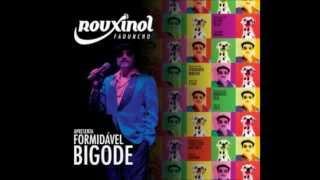 Rouxinol Faduncho -- Meia Branca, Meia Branca
