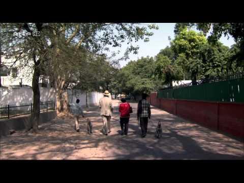 Ein Engländer in Indien 1/5: Paul Merton in Delhi (HD)