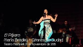 Lhasa de Sela-El Pájaro versión de María Bradley & Gitanos de Ciudad