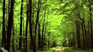 Iancu Jianu - balada, versiunea originala...by Cujba