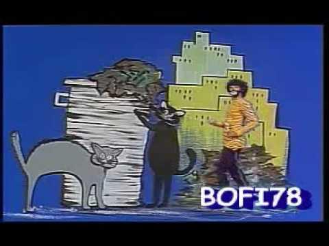 El Gato Viudo En Ingles de Chava Flores Letra y Video