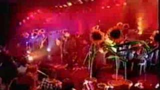 Oasis Whatever TOTP