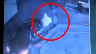 Video evidencia que Tom Kaulitz fue provocado (español)
