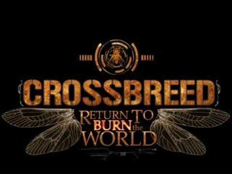 Pure Energy de Crossbreed Letra y Video