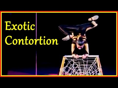 Contortion Acts Of Spider-Minded Girls