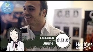 Herbie Interviews CBD Seeds