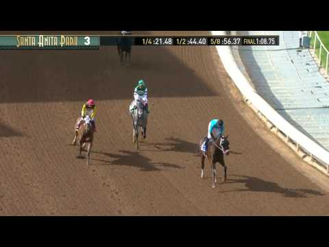 Palos Verdes Stakes (Gr. II) - February 4, 2017