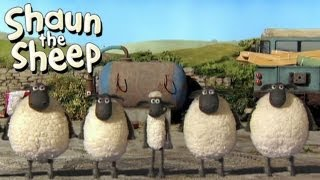 Shaun the Sheep - River Dance (OFFICIAL VIDEO)