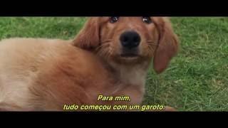 Quatro Vidas de Um Cachorro Trailer 1