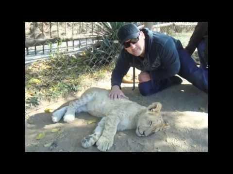 Lion Park.mov
