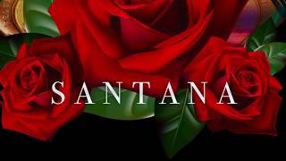 Mandragora - Santana