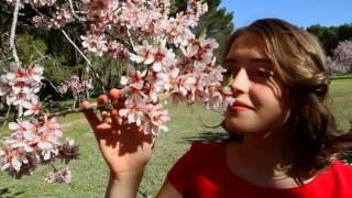 Anamaria Vladuta Tomoiaga- Dor de tine