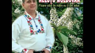 Nelutu Moldovan - Doamne ce mai ploua afara