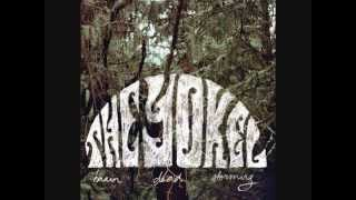 The Yokel - Indian feather