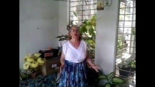 A Flor do Maracujá (Catulo da Paixão Cearense) - Adeilda Galindo