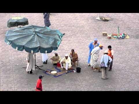 Djemaa el Fna. Snake charmers. Marrakech.