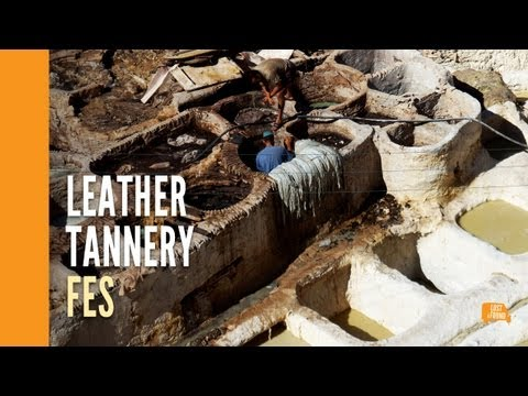 Moroccan Leather Tannery – Fes Medina