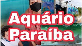 Aquário Paraíba - Encontro com Tubarão!!!