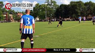 Los Sharks juegan partido de despedida en Liga Interamericana