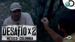 Sobrevivendo à Noite   Desafio em Dose Dupla: Colômbia e México