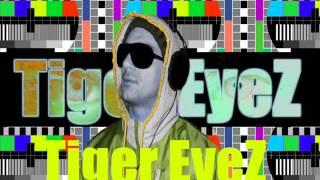 Tiger EyeZ -DJ MIX- Europe - (The Final Countdown) -REMIX -Tiger EyeZ- edition M/V