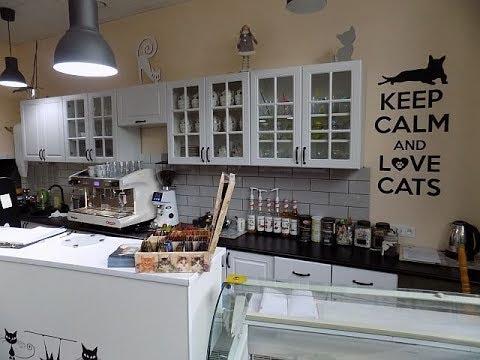 Kocia kawiarnia - Koci Gościniec w Radzionkowie